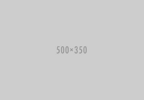 placeholder-500-350